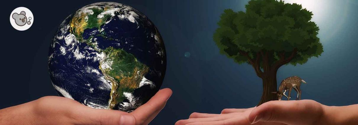 sostenibilidad ambiental qué es