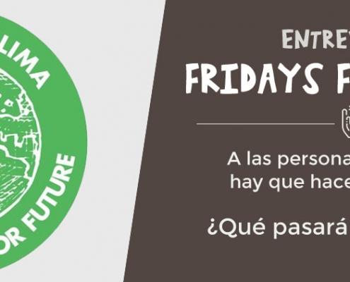 entrevista a Fridays for future españa