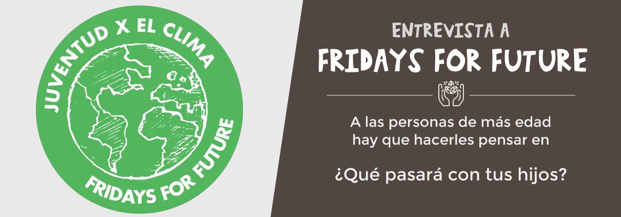 entrevista a Fridays for future españa