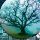 sellos ecológicos que ayudan al medio ambiente
