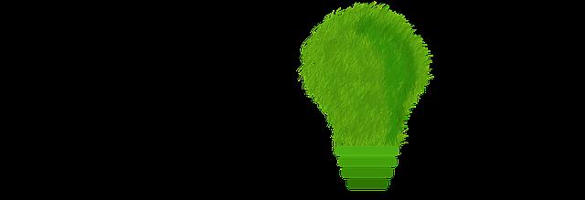 sostenibilidad y consumo