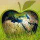 sostenibilidad y consumo responsable